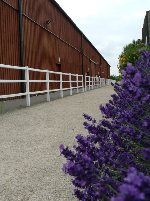 Access to Indoor and Outdoor Equine Arenas