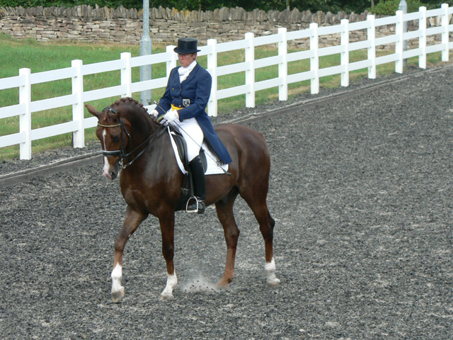 International Rider in the Outdoor Equine Arena