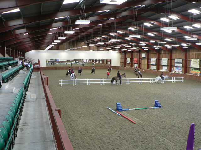 Shared Arena Hire in the Indoor Equine Arena
